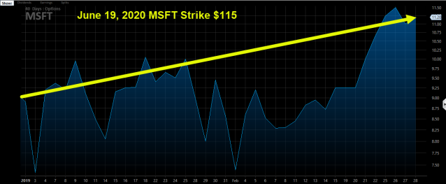 MSFT Long Term Option